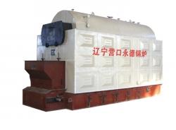 DZL型燃煤蒸汽、热水锅炉